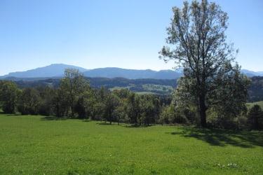 Hirmhof - Aussicht zum Ötscher
