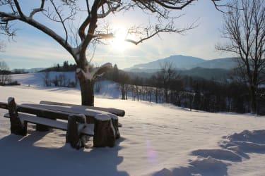 Ötscher Winter