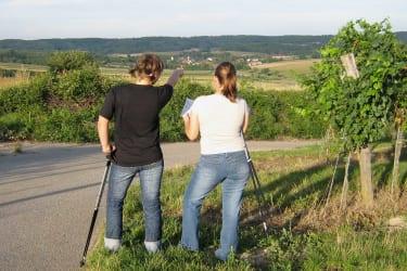 Nordic Walken in den Weinbergen