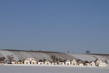 Weinberg und Kellergasse mit Schnee