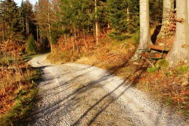 ruhige Waldwege
