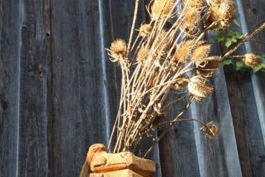 Biohof Besenbäck - Begrüßung mit einem Strauß