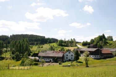 Biohof Besenbäck - eingebettet in die Landschaft
