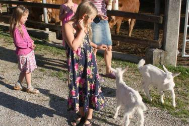 Biohof Besenbäck - Es geht ans Füttern der Ziegen