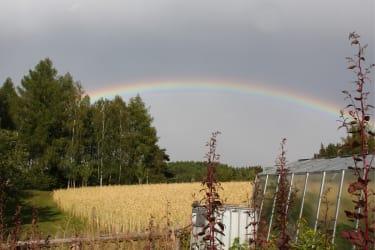 Biohof Besenbäck - Schöne Wettersituation über dem Gemüsegarten