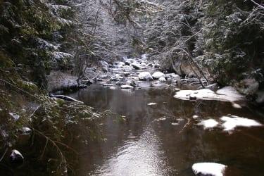 Auch im Winter ist eine Wanderung beim Kamp ein romantisches Erlebnis