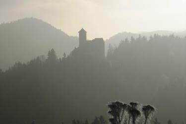 Burg Rappottenstein im Morgennebel