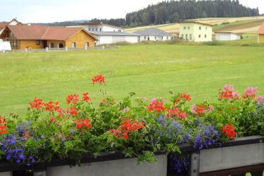 idyllische Ruhelage in Waldnähe
