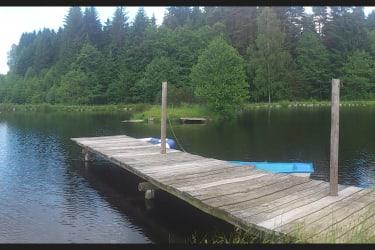 Teich mit Insel