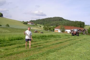 Gras mähen für Heuernte