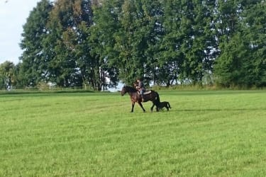Moritz begleitet Safira beim Ausritt