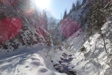 Winterwanderung Hochsalm