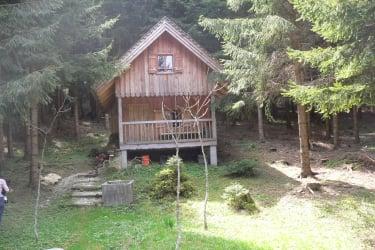 Auf wunsch kann man unsere Waldhütte besuchen
