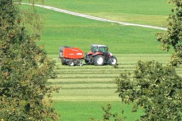 Erntearbeiten am Hof
