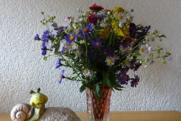Blumen aus dem eigenen Garten