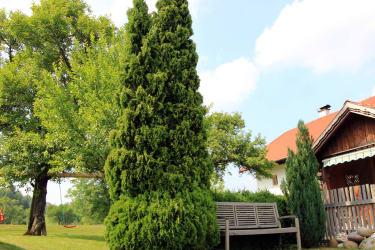 Gartenbank