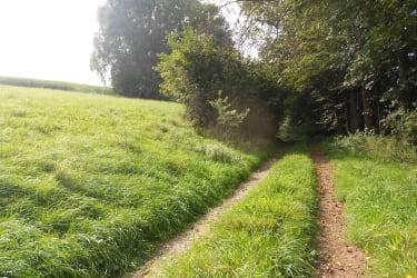 Reit- und Wanderwege
