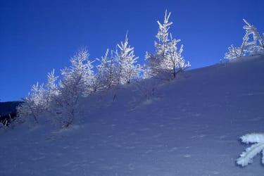 kalte Wintertage