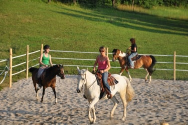 Pferde Reiten Urlaub BIO Hof zu Steinern
