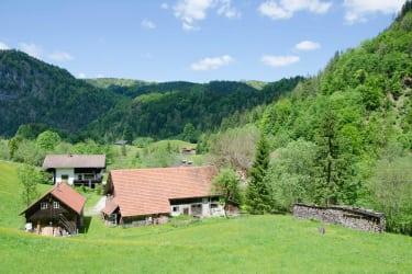 Sicht auf den Hof von der Waldhütte