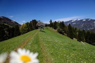 Urlaub im Herzen der Natur