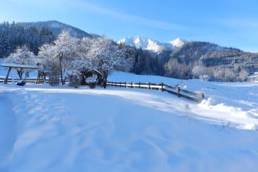 Winterlandschaft am Hof