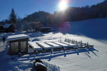 Hausgarten im Winter