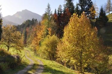 bei uns im Herbst