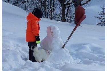Schneemann mit Katz und Co