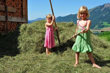 Kinder bei der Heuarbeit!