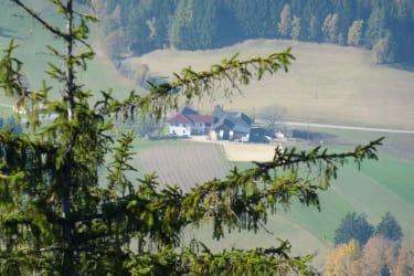 Burgstallblick auf den Großreithner-Hof