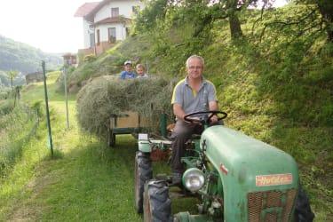 mit dem Oldtimer Traktor Heu einbringen