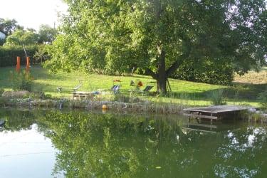 Mittagsruhe am Schwimmteich