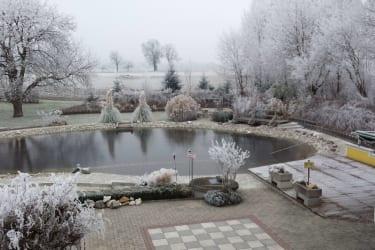 Winterruhe am Schwimmteich