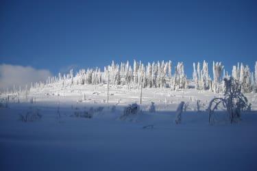 Hufberg im Winter