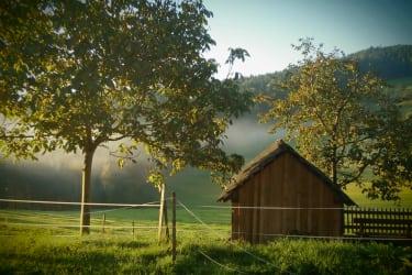 Herbst am Zizlhof
