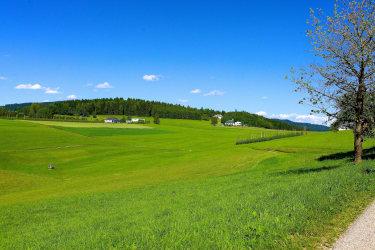 ein schöner Ausblick von unserem Hof aus