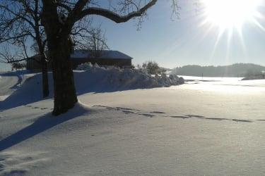 sonniger und kalter Wintertag