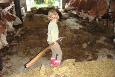 Lina füttert die Kühe