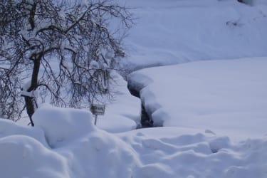 Ist es nicht total sch?n bei uns im Winter?