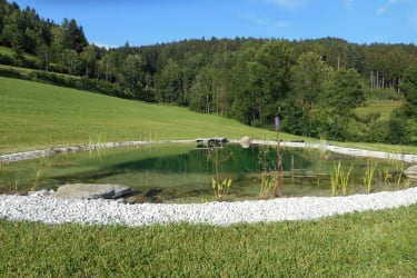 Schwimmteich am Nussbaumerhof