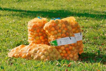 Äpfel bereit zum Pressen für Apfelsaft am Biohof Schafflhof