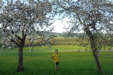 Streuobstwiese - Frühling