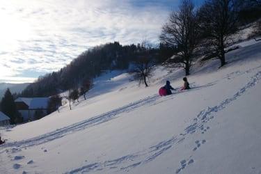 Bobfahren im Winter