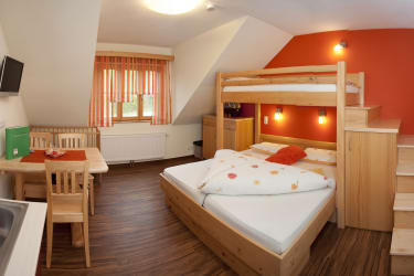 Wohn-Schlafzimmer des Apart.