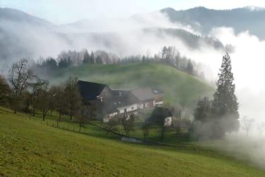 Haufenhof Typische Hofform in unserer Region