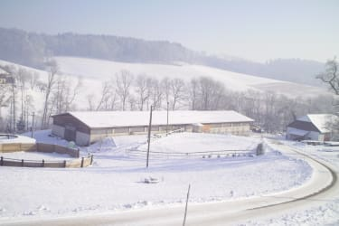 Winter am Hof
