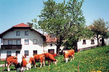 Bauernhof Stöllner in Hellmonsödt