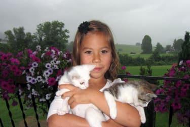 Ein Gastkind mit den Katzen