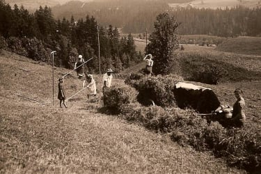 Heuernte in den 60er Jahren